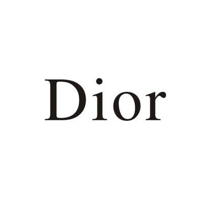 鼎富客户-Dior